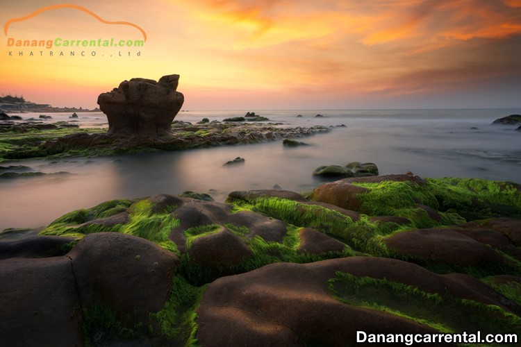 Nam O Reef – A new attractive tourist attraction in Danang