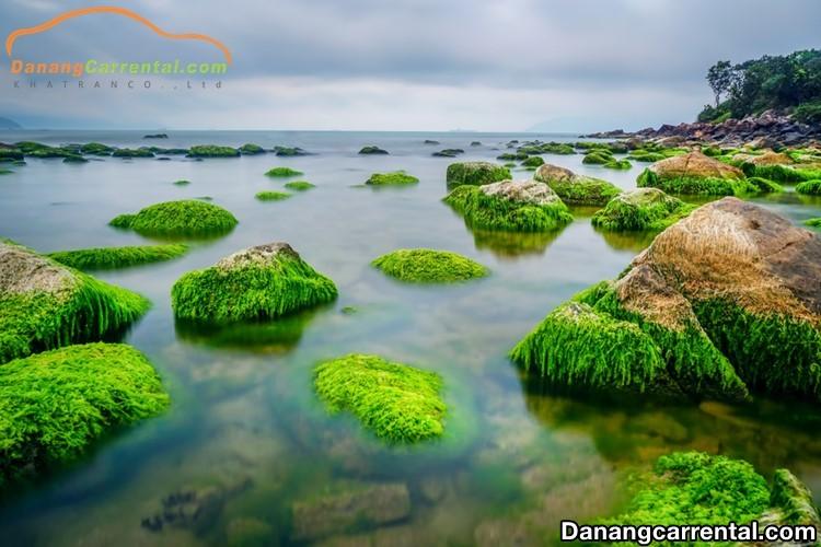 Nam O reef