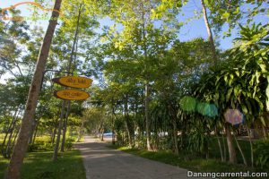 General information about Thanh Tan hot springs resort