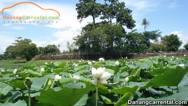 Tinh Tam Lake